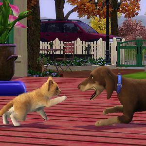 Sims  Cats And Dogs Can You Control Pets